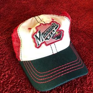 Zephyr NHL Minnesota Wild Adjustable State Cap